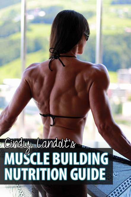muscle-building-nutrition-guide-shop